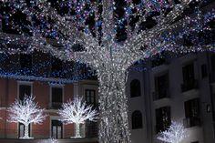 "Salerno, Luci d'Artista ""La Rotonda"" Piazza Flavio Gioia  www.livesalerno.com  #lucidartista #lucidartista2015 #salerno #luminarie #luminariesalerno #lucidartistasalerno #mercatinidinatale #christmas #christmasmarket #Natale"