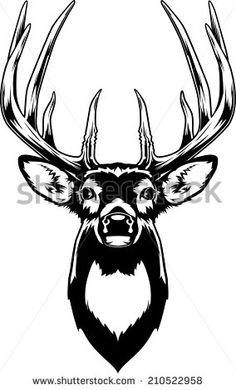stock-vector-whitetail-deer-head-vector-illustration-of-a-whitetail-deer-head-210522958.jpg (284×470)
