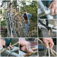 Build a Garden Trellis from Tree Branches Project Homesteading  - The Homestead Survival .Com
