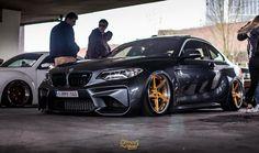 M2 Gold Wheels, Bmw M Series, Bmw Performance, Bmw 2, Bavarian Motor Works, Bmw Cars, Bmw Vehicles, Audi, Porsche