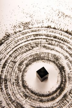 Magnetism by Ahmed Mater.  The artist used a magnet and iron filings to simulate the motions of pilgrims circumambulating the Sacred House (Ka'bah) in Mecca.