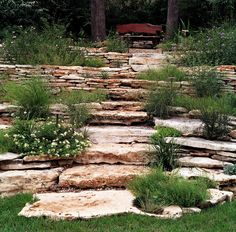 Drought Tolerant Backyard Designs drought tolerant landscaping ideas Rocksteps Drought Tolerant Landscape Design