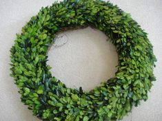 Dried Boxwood Holiday Wreath Natural Wreath Green Wreath Boxwood Wreath Home Decor Wedding Decor Preserved BOXWOOD WREATH 20 inch Boxwood Boxwood Wreath Christmas Wreath Wedding Wreath Saint Patrick's Day. Twig Wreath, Boxwood Wreath, Green Wreath, Hydrangea Wreath, White Wreath, Wedding Wreaths, Wedding Decorations, Holiday Decorations, Crowns