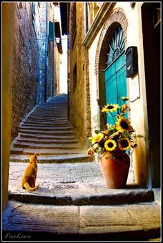 Everybody wants to visit the Toscana, Italy. The Tuscany boasts a proud heritage. left a striking legacy in every aspect of life. Oh The Places You'll Go, Places To Travel, Places To Visit, Beautiful World, Beautiful Places, Under The Tuscan Sun, Tuscany Italy, Italy Italy, Venice Italy