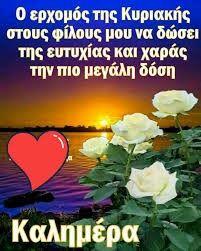 Beautiful Pink Roses, Mom And Dad, Good Morning, Decor, Buen Dia, Decoration, Bonjour, Bom Dia, Decorating
