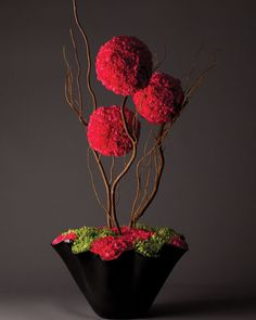 Three hot pink carnation spheres balanced with curly willow and a tight carpet of green anastasia and hot pink carnations make this piece modern, edgy and intense. For Valentine?
