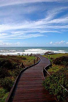 The boardwalk to the beach in Cambria, San Luis Obispo, California California Garden, Central California, California Coast, Central Coast, Pismo Beach, Beautiful Sites, Beautiful Places, California Places To Visit, Cambria California