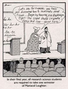 1000 images about far side cartoons on pinterest the