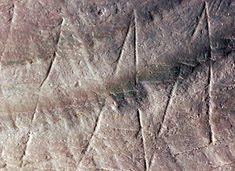 Het zigzagpratoon op de fossiele 'Pseudodon schelp', gemaakt door Homo erectus op Trinil. (Foto: Wim Lustenhouwer, Vrije Universiteit)
