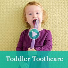See baby and toddler toothcare tips from a pediatric dentist and what to expect during your kiddo's first trip to the dentist:  http://www.parents.com/videos/v/61652175/toddler-toothcare.htm?socsrc=pmmpin130627pttToothcare