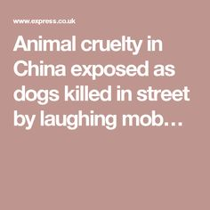 Animal cruelty in China exposed as dogs killed in street by laughing mob…
