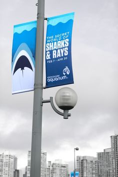 Look closely at the shark design. Ads Of The Vancouver Aquarium - TAXI Vancouver Vancouver Aquarium, Flag Design, Banner Design, Street Banners, Pole Banners, Pole Sign, The Secret World, Best Ads, Outdoor Banners