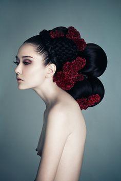 Celosia by Zhangjingna