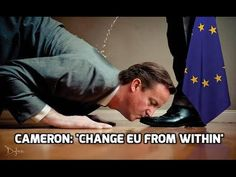 The EU Scam in Memes – David Icke – Global Truth