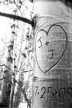 Tree Carving Save The Date Photo Idea. See more here: 27 Cute Save the Date Photo Ideas | Confetti Daydreams ♥  ♥  ♥ LIKE US ON FB: www.facebook.com/confettidaydreams  ♥  ♥  ♥ #Wedding #SaveTheDate #PhotoIdeas