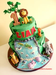 Jungle water fall 1 st Birthday cake!