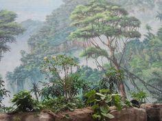 Ich denk, ich steh im Urwald – Illusionsmalerei von Uwe Thürnau (c) Frank Koebsch - Das Darwineum ist ein absolutes Highlight im Rostocker Zoo, mehr Informationen unter http://frankkoebsch.wordpress.com/2012/09/22/die-grosten-wandmalereien-in-rostock/