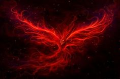 the red phoenix - (#142021) - High Quality and Resolution Wallpapers on wallbaseHQ.com