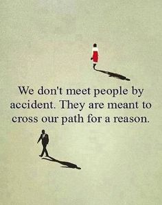 We don't meet people by accident. They are meant to cross our path for a reason. #quotes