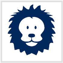 #strijkapplicatie leeuw van www.bepenco.com
