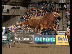 Professional Bull Riders - 2014 PBR Passport Invitational