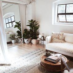 sofa, plants, wood, living room