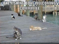 The Welcoming Committee