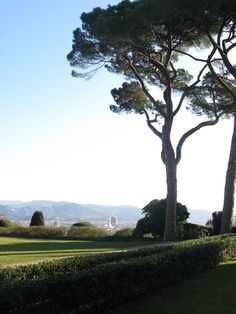Florence: A view from Bellosguardo overlooking florence. What I love about Tuscany is the most amazing trees, like they belonged to some kind of past kingdom of the giants. my-life-my-loves-my-passions-my-journey
