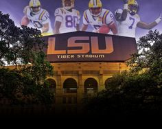 He Takes What He Wants (The Honey Badger Song) featuring Wayne Toups Lsu Tiger Stadium, Lsu Tigers Football, Stadium Wallpaper, Football Wallpaper, Tiger Wallpaper, Louisiana State University, Honey Badger, Education College, Paint Party