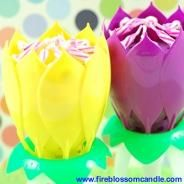 Spring - 1 Yellow & 1 Purple Fire Blossom  www.fireblossomcandle.com  A unique cake candle for your birthday party