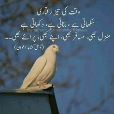 Best Quotes In Urdu, Best Urdu Poetry Images, Ali Quotes, Love Poetry Urdu, Urdu Quotes, Qoutes, People Quotes, Quotations, Iqbal Poetry