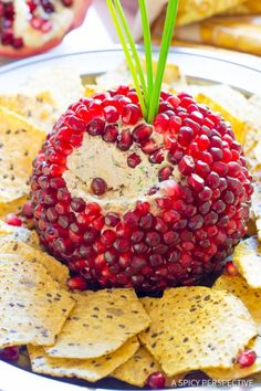 A Spicy Perspective Pomegranate Crusted Cheese Ball Recipe Love this Holiday Pomegranate Crusted Cheese Ball Recipe on ASpicyPerspective… Cheese Appetizers, Yummy Appetizers, Appetizers For Party, Appetizer Recipes, Pomegranate Recipes Appetizer, Dinner Recipes, Cheese Ball Recipes, Potato Recipes, Vegetable Recipes