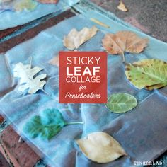 How to make a Preschool Leaf Collage with clear contact paper. So easy and a fun way to explore nature with young children. Science Experiments For Preschoolers, Art Activities For Kids, Craft Projects For Kids, Autumn Activities, Arts And Crafts Projects, Toddler Activities, Sensory Activities, Outdoor Activities, Craft Ideas