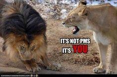 It's not PMS.  It's YOU!