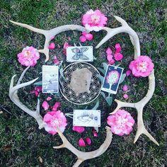 the wild unknown sacred tarot mandala via @the7directions