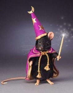R-John-Wright-Black-Magic-Mouse-Halloween-Mice-Collection