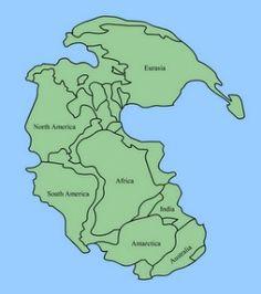 http://tipstipskesehatan.tumblr.com/post/121650570571/proses-evolusi-bumi-beberapa-periode