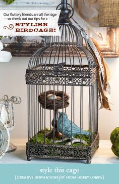 Hobby Lobby Project - Style This Cage - birdcage, iron, do it yourself, diy, decor, home, accents, spring, summer, natural, moss, birds, nes...