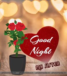Here is a cute good night sister image for every sister. Good Night Sister, Cute Good Night, Good Night Messages, Good Night Quotes, Inspirational Morning Prayers, Sisters Images, Beautiful Good Night Images, Galaxy Pictures, Night Wishes