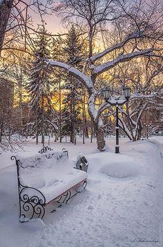 Gyönyörű téli tájkép,