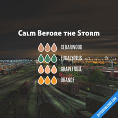 Calm Before the Storm - Essential Oil Diffuser Blend Mike says this one smells like Lysol Essential Oil Diffuser Blends, Doterra Essential Oils, Young Living Oils, Young Living Essential Oils, Calm Before The Storm, Diffuser Recipes, Aromatherapy Oils, Tips Belleza, Belleza Natural