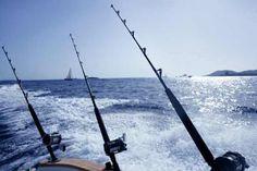 Deep sea fishing rod and reel and sea fishing rods on for Groupon deep sea fishing
