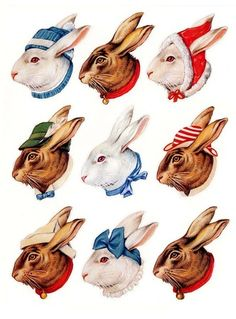 Dandy Bunny stickers