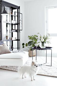 Scandinavian Interior Design Ideas to Your Next Project   www.essentialhome.eu/blog   #midcentury #architecture #interiordesign #homedecor #scandinavian
