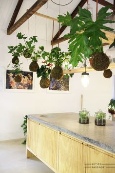 On Wednesdays I like to take you with me through the huge Petite Passport hotspot archive with today a focus on plants. The most beautiful spots in the world make use of green in a fantastic way. From an installation in Milan to a huge...
