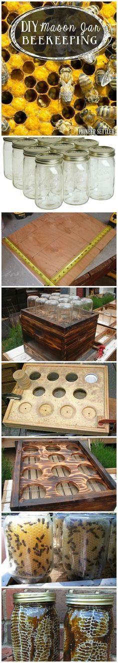 DIY Mason Jar Beekeeping   Bees and Beekeeping Tips and Recipes   Pioneer Settler   DIY Hive Building and Beekeeping 101 at pioneersettler.com