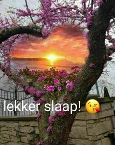 Good Night Blessings, Good Night Wishes, Good Night Sweet Dreams, Good Night Quotes, Afrikaanse Quotes, Goeie Nag, Special Quotes, Sleep Tight, Christmas Wishes