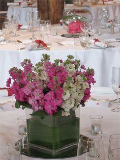 Cube vase full of pink and white stocks