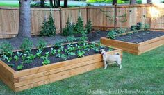 42 Free DIY Raised Garden Bed Plans