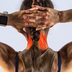 Mi a banyapúp, és hogyan kell helyrehozni (Ez nem csak a testtartásodról szól) Posture Correction Exercises, Posture Exercises, Kyphosis Exercises, Body Stretches, Posture Fix, Bad Posture, Back Hump, Buffalo Hump, Position Pour Dormir